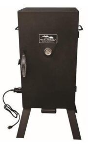 BEST SMALL ELECTRIC SMOKERS ON THE MARKET