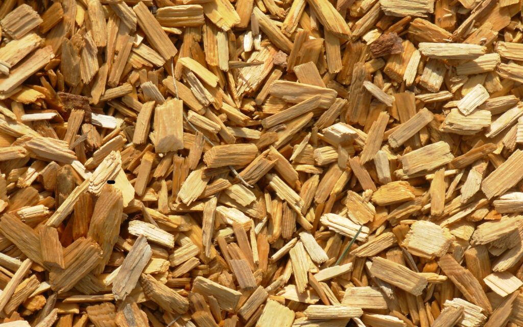 Best Wood Chips for Smoking